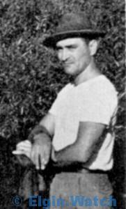 Lou Molner